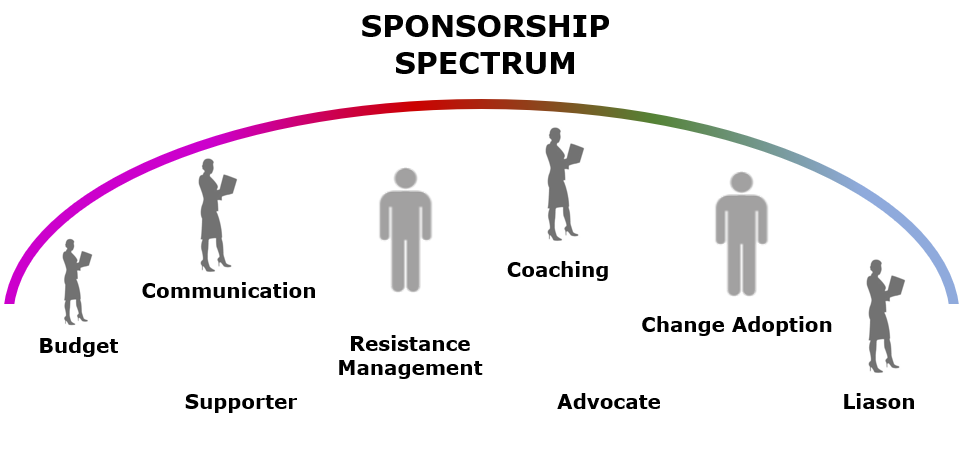 Change and Program Management - Sponsors and Stakeholders
