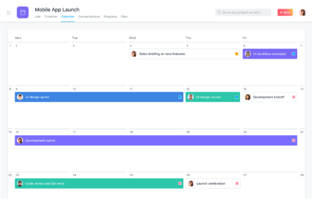 Other Asana Free Features