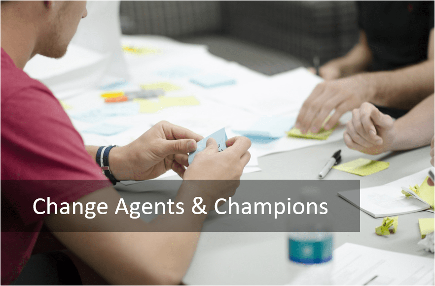 Change Agents and Champions - Change Champion Network-min