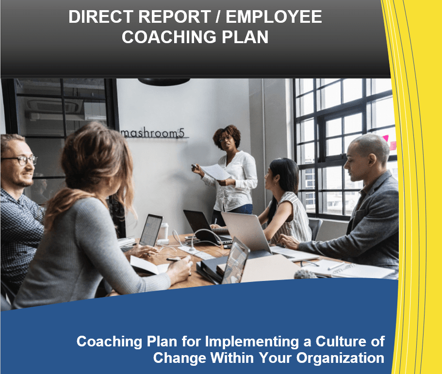 Employee Coaching Through Business, IT, System and M&A Integration
