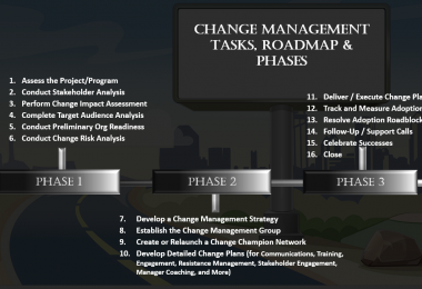 Organizational Change Management Tasks, Processes and Phases