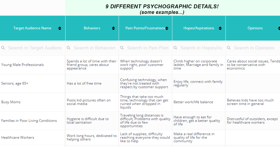 Psychographic Target Audience Details